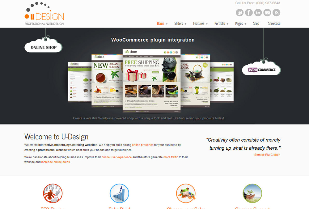 WordPress Theme Installation Demo & Plug-in Set-up, With SEO Setup & Security & Speed