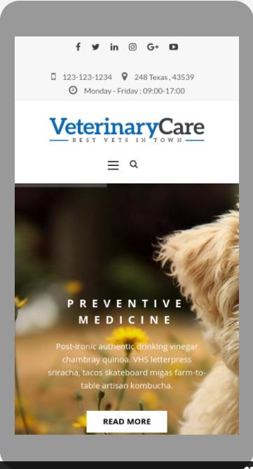 Responsive pet care wordpress theme