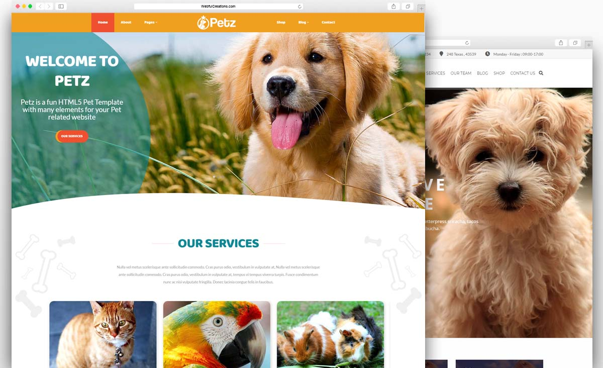 WordPress Themes Collection