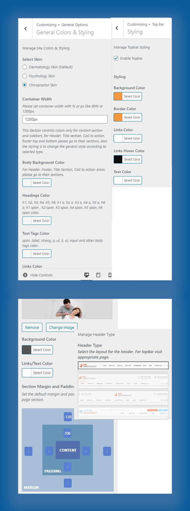 Customizer options Chiropractor WP theme